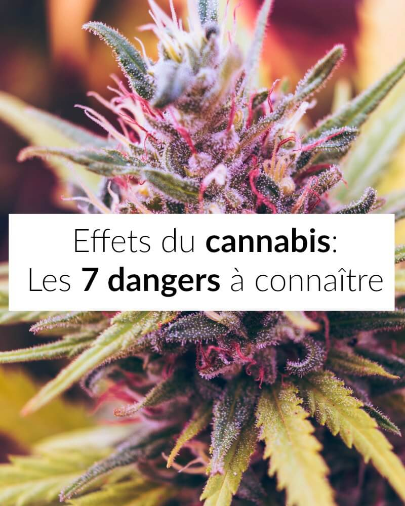 effets du cannabis 2